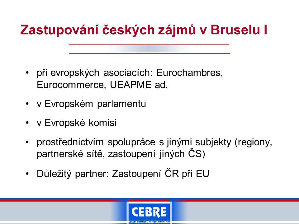 Zastupování českých zájmů v Bruselu I •při evropských asociacích: Eurochambres, Eurocommerce, UEAPME ad. •v Evropském parlamentu •v Evropské komisi •p