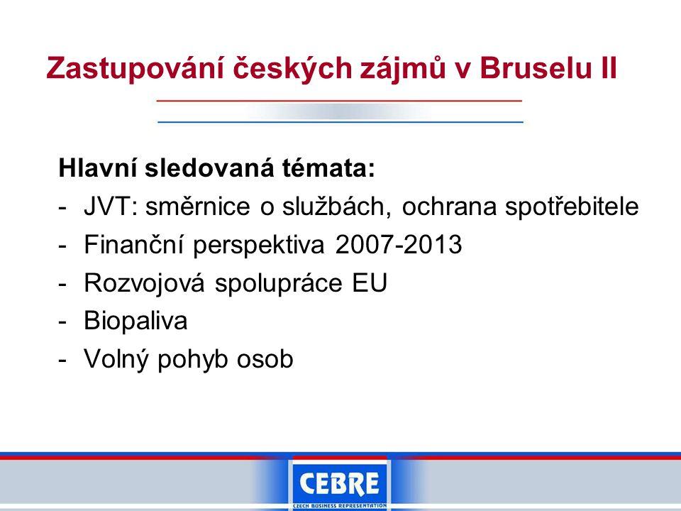 Zastupování českých zájmů v Bruselu II Hlavní sledovaná témata: -JVT: směrnice o službách, ochrana spotřebitele -Finanční perspektiva 2007-2013 -Rozvo