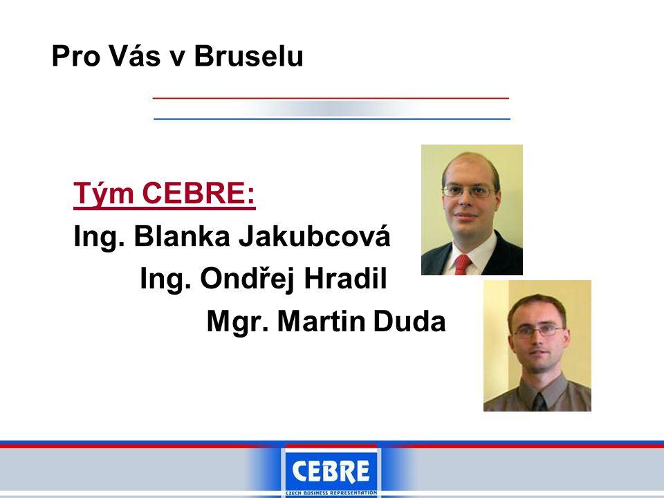 Tým CEBRE: Ing. Blanka Jakubcová Ing. Ondřej Hradil Mgr. Martin Duda Pro Vás v Bruselu