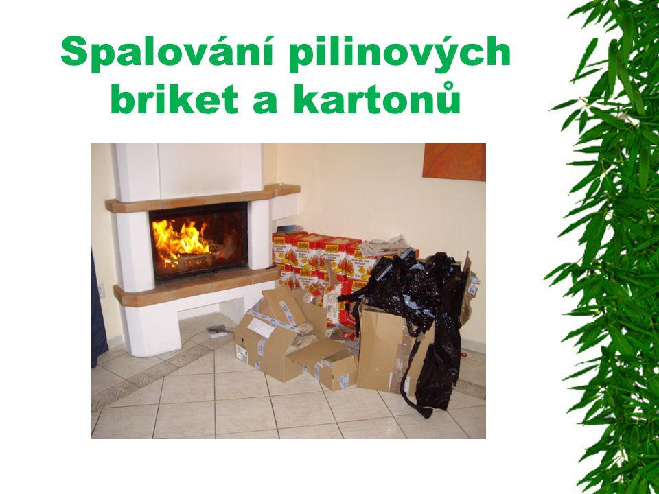 Spalování pilinových briket a kartonů