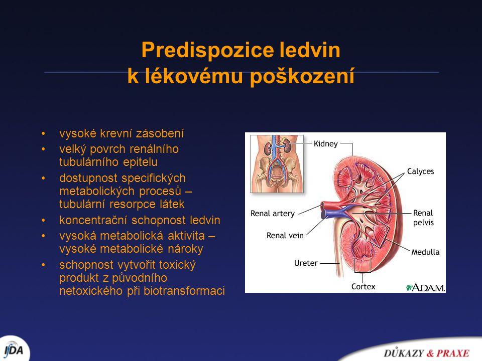 Predispozice ledvin k lékovému poškození •vysoké krevní zásobení •velký povrch renálního tubulárního epitelu •dostupnost specifických metabolických pr