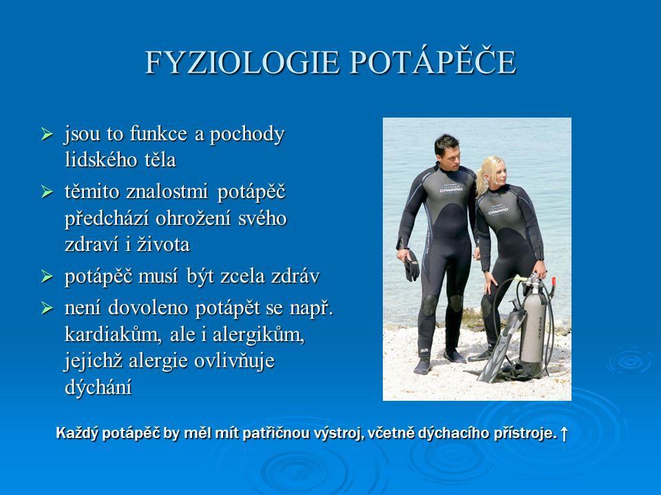 DÝCHÁNÍ Z HLEDISKA POTÁPĚNÍ  ventilace plic je pro potápěče velmi důležitá  minutová ventilace určuje množství spotřebovaného vzduchu a tím i celkovou dobu ponoru  zbytkový objem - objem vzduchu v plicích po maximálním výdechu - není možné jej již vydechnout, je však důležitý pro stanovení mezní teoretické hloubky při potápění na nádech