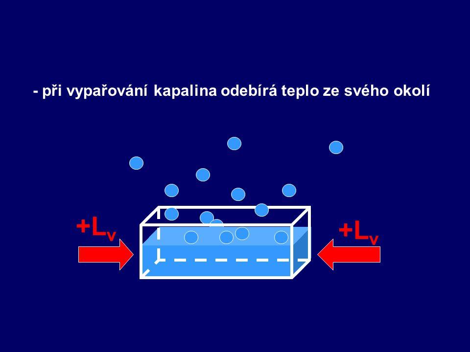 - při vypařování kapalina odebírá teplo ze svého okolí +L v