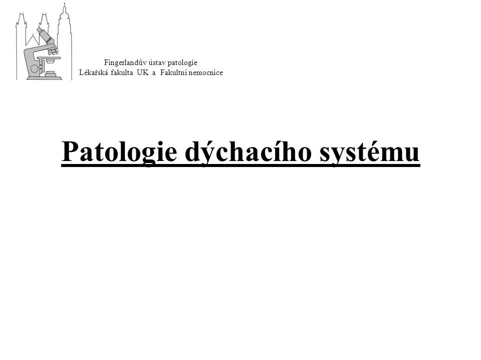 Patologie dýchacího systému Fingerlandův ústav patologie Lékařská fakulta UK a Fakultní nemocnice