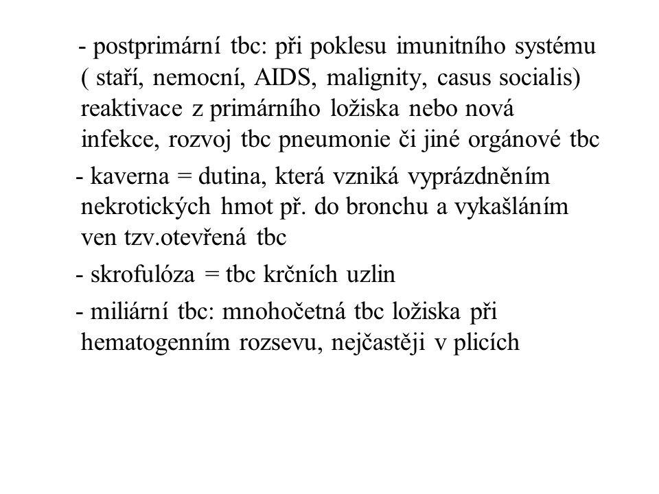 - postprimární tbc: při poklesu imunitního systému ( staří, nemocní, AIDS, malignity, casus socialis) reaktivace z primárního ložiska nebo nová infekc