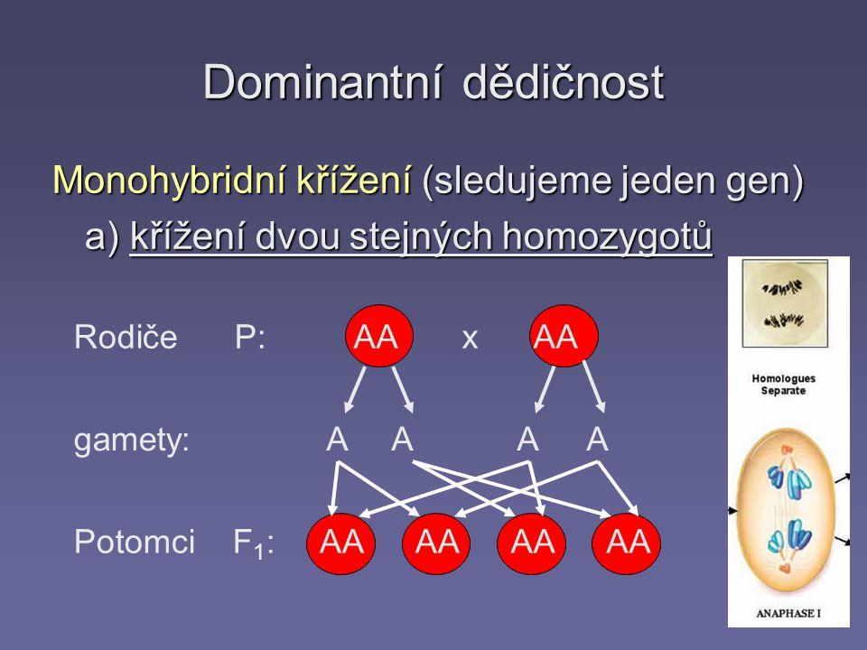 Dominantní dědičnost Monohybridní křížení (sledujeme jeden gen) a) křížení dvou stejných homozygotů Rodiče P: gamety: Potomci F 1 : AA x AA A A AA AA