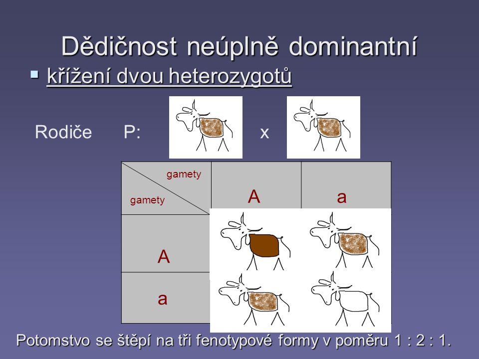 Dědičnost neúplně dominantní  křížení dvou heterozygotů gamety A A a a Rodiče P:Aa x Aa AAAa aa Aa Potomstvo se štěpí na tři fenotypové formy v poměru 1 : 2 : 1.