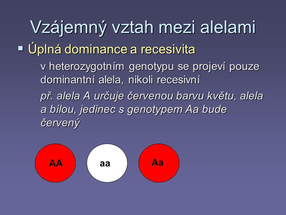 Vzájemný vztah mezi alelami  Úplná dominance a recesivita v heterozygotním genotypu se projeví pouze dominantní alela, nikoli recesivní př.