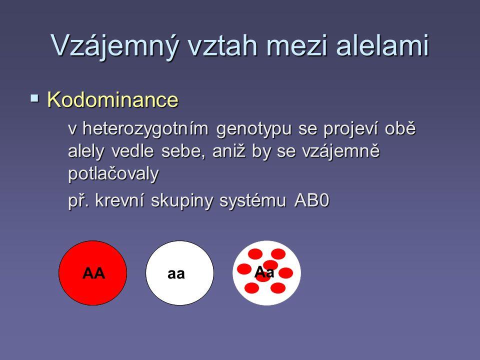 Vzájemný vztah mezi alelami  Kodominance v heterozygotním genotypu se projeví obě alely vedle sebe, aniž by se vzájemně potlačovaly př.