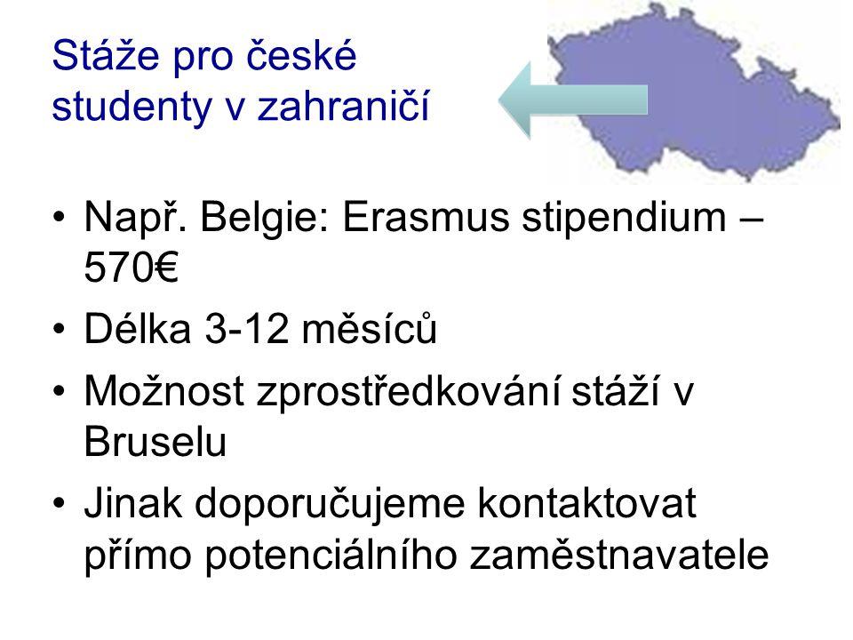 Stáže pro české studenty v zahraničí •Např.