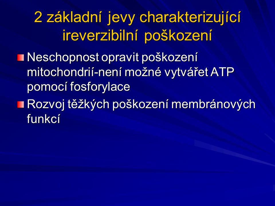 2 základní jevy charakterizující ireverzibilní poškození Neschopnost opravit poškození mitochondrií-není možné vytvářet ATP pomocí fosforylace Rozvoj
