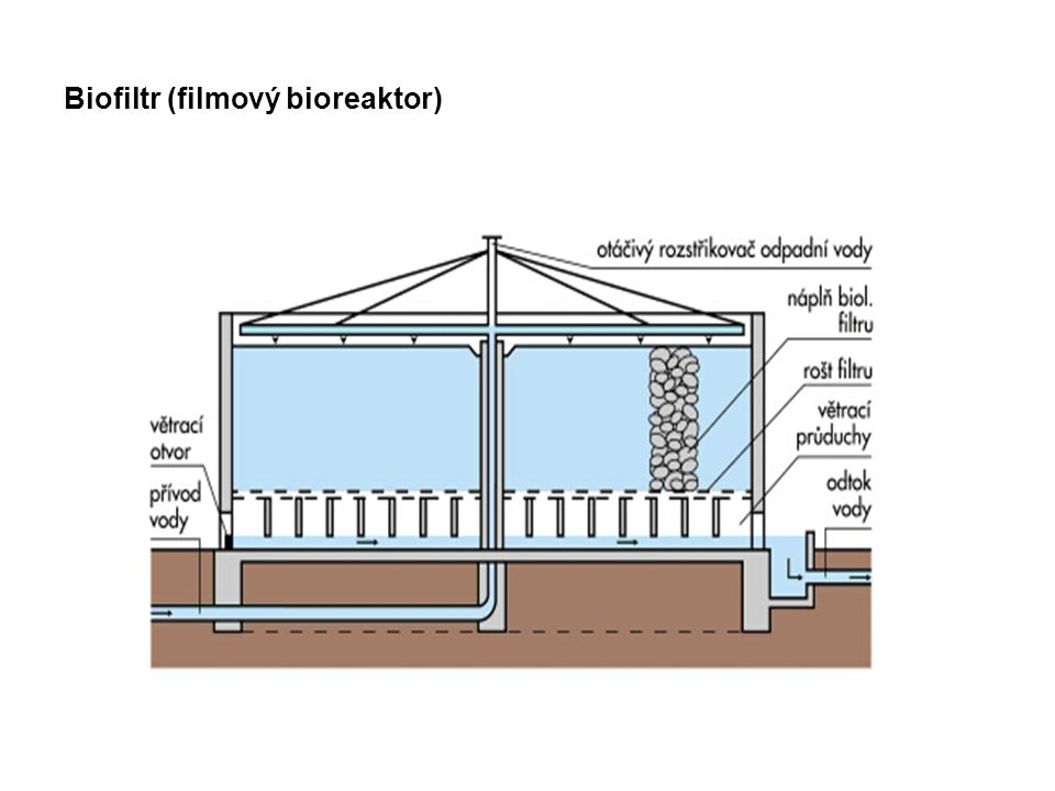 Biofiltr (filmový bioreaktor)