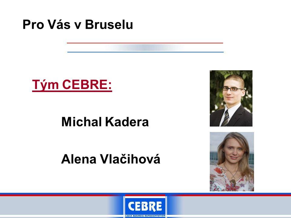 Tým CEBRE: Michal Kadera Alena Vlačihová Pro Vás v Bruselu