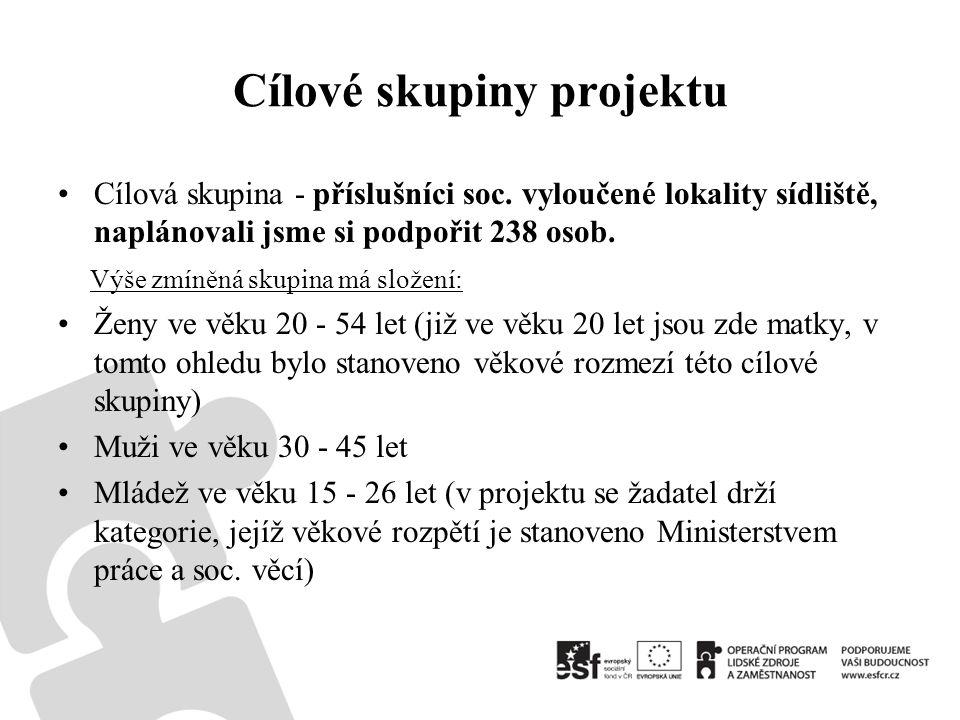 Terénní práce v číslech •Monitorovací období 01.09.2012 – 28.02.2013 •Klíčová aktivita byla realizována dle časového harmonogramu; od 8, 00 – 12,00 hod.
