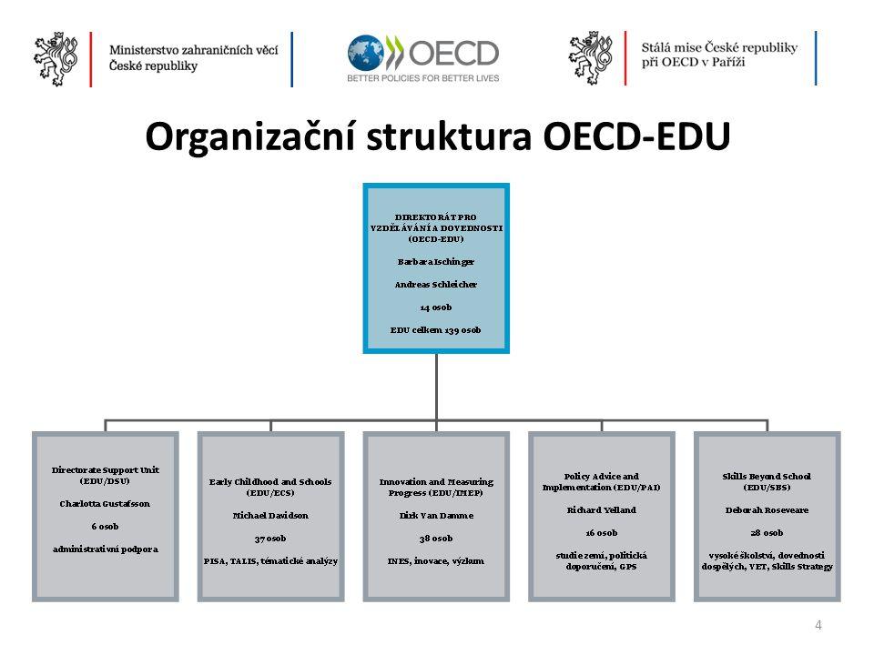 OECD Skills Strategy • Horizontální program OECD, který hledá odpovědi na následující otázky:  Které dovednosti jsou potřebné v dnešní globalizované ekonomice.