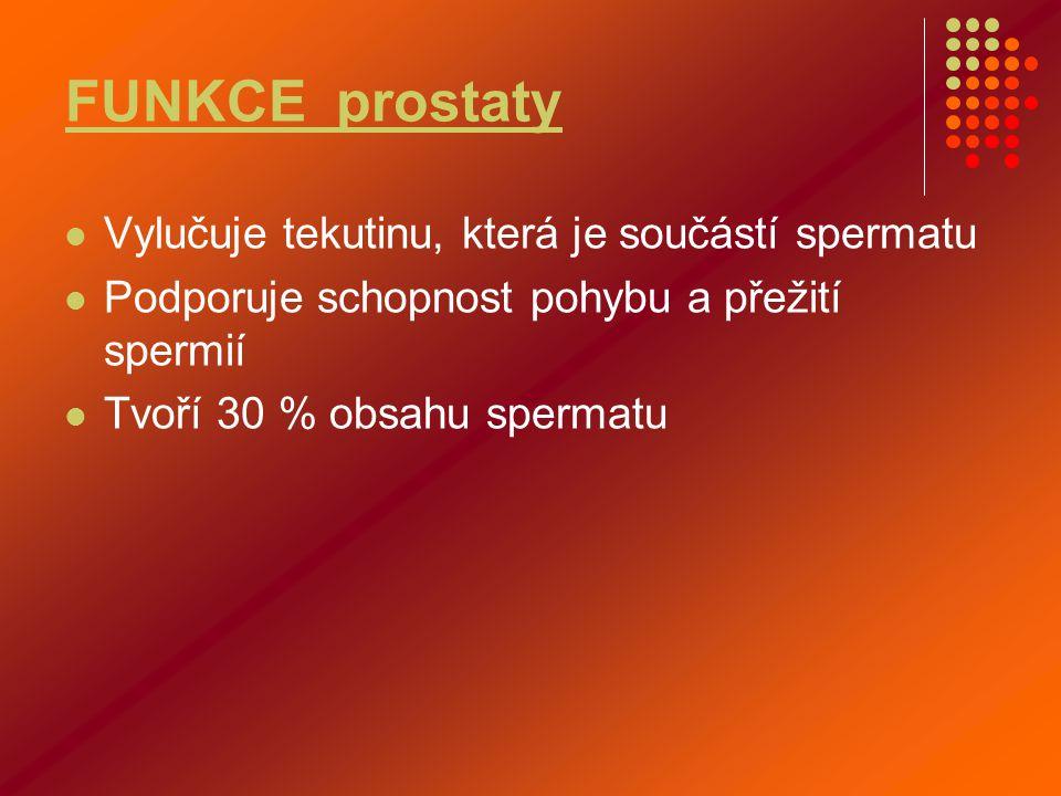 FUNKCE prostaty  Vylučuje tekutinu, která je součástí spermatu  Podporuje schopnost pohybu a přežití spermií  Tvoří 30 % obsahu spermatu