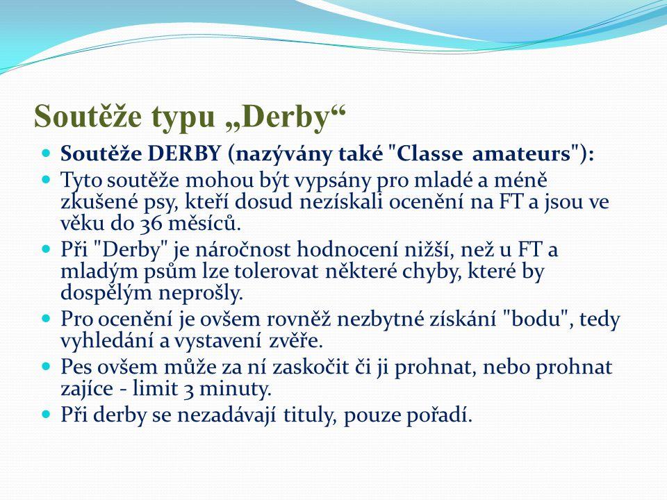 """Soutěže typu """"Derby""""  Soutěže DERBY (nazývány také"""