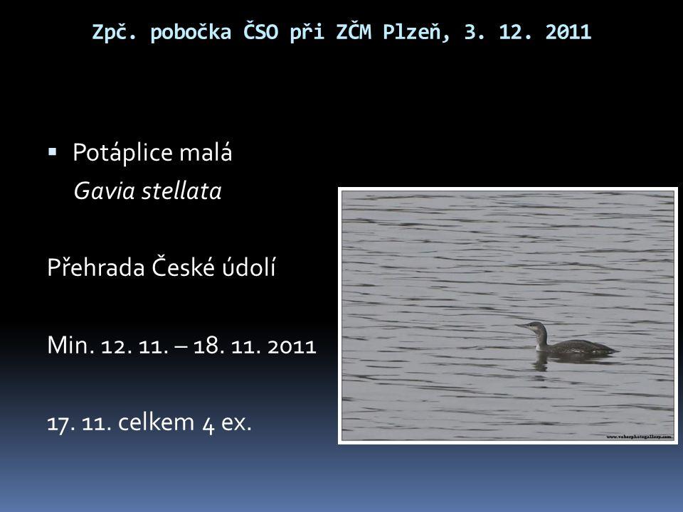 Zpč.pobočka ČSO při ZČM Plzeň, 3. 12.