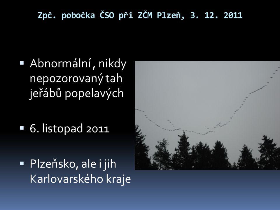 Zpč. pobočka ČSO při ZČM Plzeň, 3. 12. 2011  Abnormální, nikdy nepozorovaný tah jeřábů popelavých  6. listopad 2011  Plzeňsko, ale i jih Karlovarsk