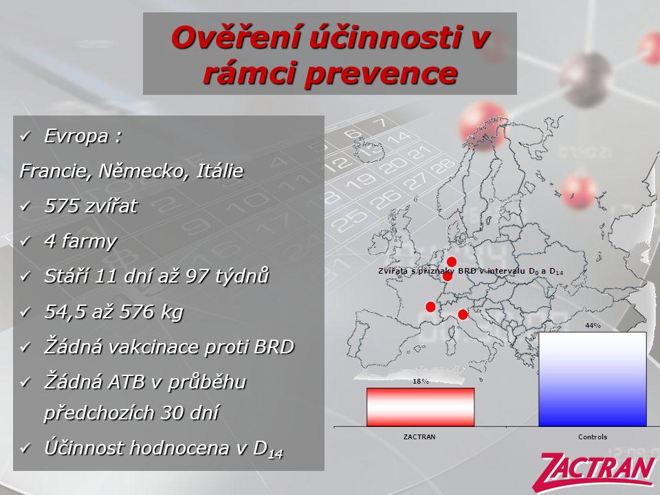 Ověření účinnosti v rámci prevence  Evropa : Francie, Německo, Itálie  575 zvířat  4 farmy  Stáří 11 dní až 97 týdnů  54,5 až 576 kg  Žádná vakc