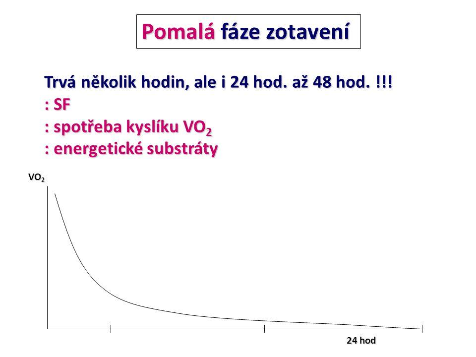 Pomalá fáze zotavení 24 hod Trvá několik hodin, ale i 24 hod. až 48 hod. !!! : SF : spotřeba kyslíku VO 2 : energetické substráty VO 2