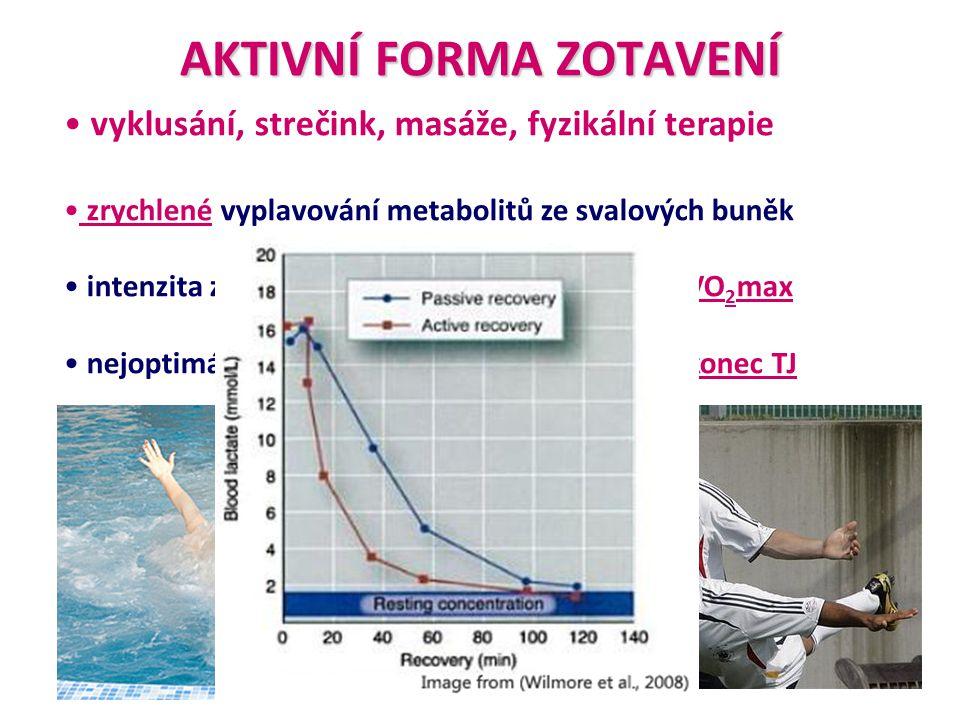 AKTIVNÍ FORMA ZOTAVENÍ • vyklusání, strečink, masáže, fyzikální terapie • zrychlené vyplavování metabolitů ze svalových buněk • intenzita zatížení by