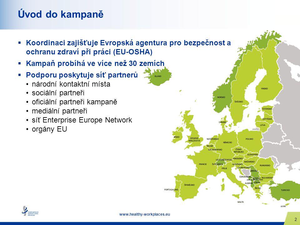 www.healthy-workplaces.eu 2 Úvod do kampaně  Koordinaci zajišťuje Evropská agentura pro bezpečnost a ochranu zdraví při práci (EU-OSHA)  Kampaň prob