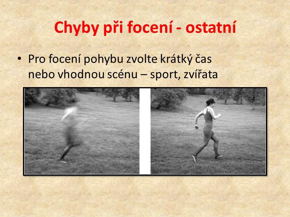 Chyby při focení - ostatní • Pro focení pohybu zvolte krátký čas nebo vhodnou scénu – sport, zvířata