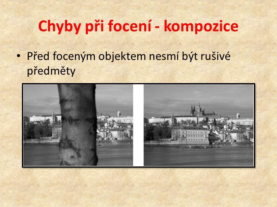 Chyby při focení - kompozice • Před foceným objektem nesmí být rušivé předměty