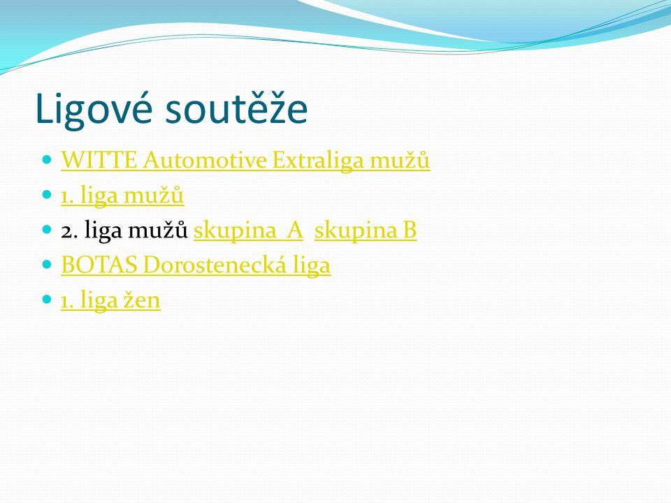 Ligové soutěže  WITTE Automotive Extraliga mužů WITTE Automotive Extraliga mužů  1. liga mužů 1. liga mužů  2. liga mužů skupina A skupina Bskupina