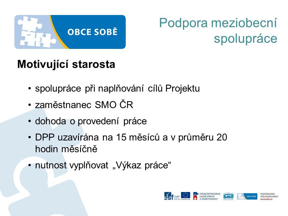Motivující starosta •spolupráce při naplňování cílů Projektu •zaměstnanec SMO ČR •dohoda o provedení práce •DPP uzavírána na 15 měsíců a v průměru 20
