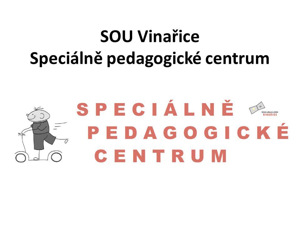 Speciálně pedagogické a psychologické testy Speciálně pedagogické a psychologické testy jsou nejnákladnější položkou vybavení SPC • TEST WJ-IE včetně vzdělávacího a zaškolujícího semináře – diagnostika kognitivních schopností.