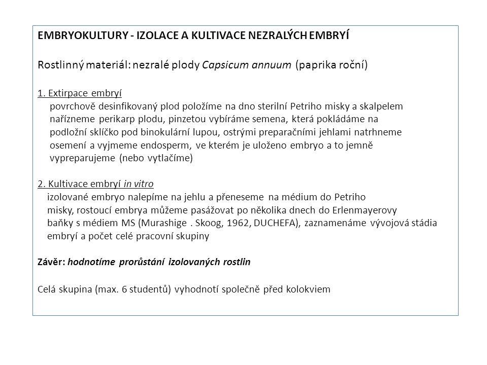 EMBRYOKULTURY - IZOLACE A KULTIVACE NEZRALÝCH EMBRYÍ Rostlinný materiál: nezralé plody Capsicum annuum (paprika roční) 1.