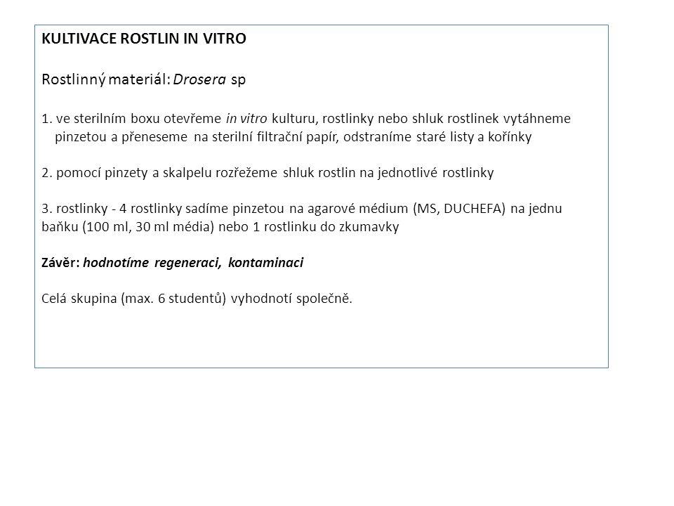 KULTIVACE ROSTLIN IN VITRO Rostlinný materiál: Drosera sp 1.