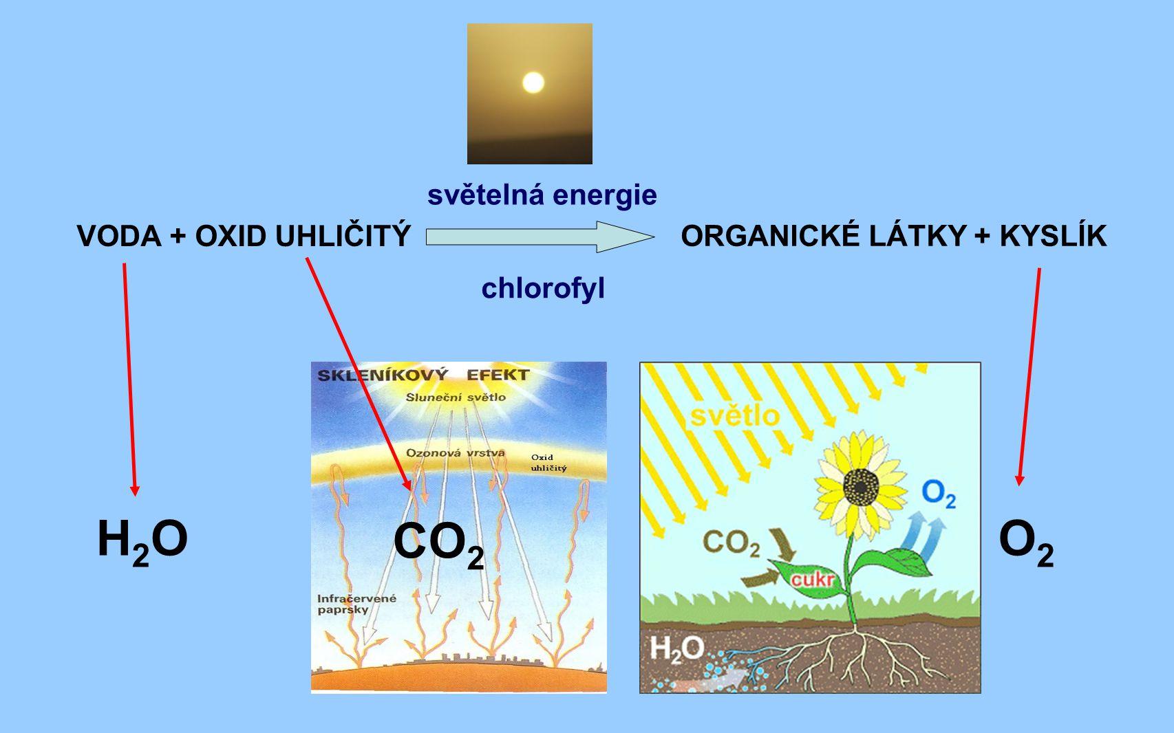 VODA + OXID UHLIČITÝ ORGANICKÉ LÁTKY + KYSLÍK H2OH2O CO 2 O2O2 světelná energie chlorofyl