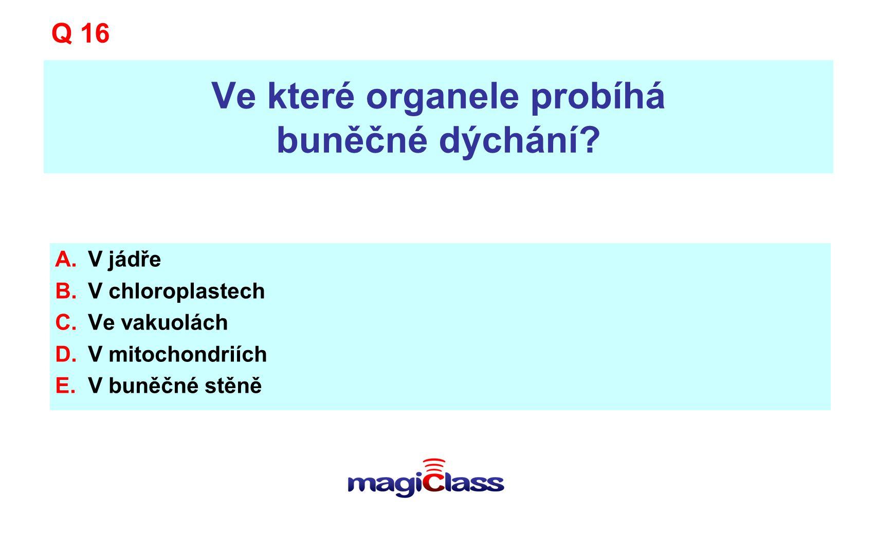 Ve které organele probíhá buněčné dýchání? A.V jádře B.V chloroplastech C.Ve vakuolách D.V mitochondriích E.V buněčné stěně Q 16
