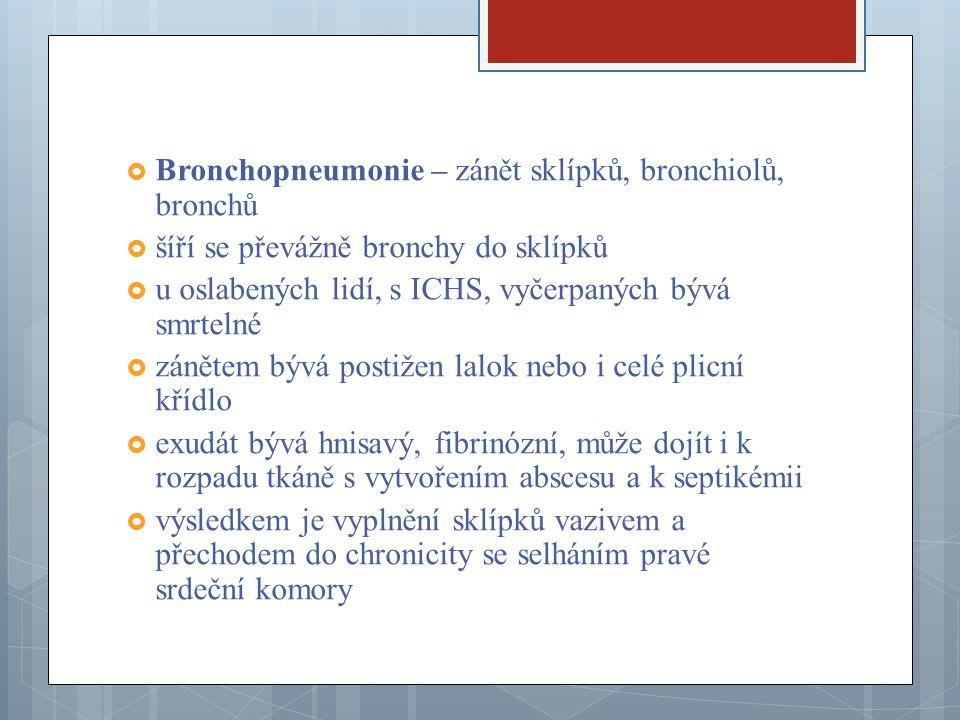 Plicní zánět nejčastěji způsobují pneumokoky, streptokoky, hemofily, stafylokoky a nozokomiální infekce způsobené nemocničními kmeny, necitlivými na běžná ATB  Atypická intersticiální pneumonie – obvykle virového původu, difuzně postihující plicní tkáň, způsobující ztluštění přepážek mezi sklípky, které často vede k respirační insuficienci a pravostrannému srdečnímu selhání