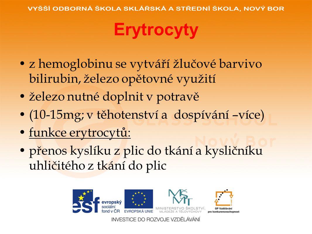 Erytrocyty •z hemoglobinu se vytváří žlučové barvivo bilirubin, železo opětovné využití •železo nutné doplnit v potravě •(10-15mg; v těhotenství a dos