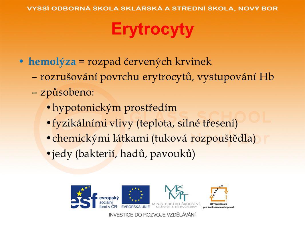 Erytrocyty • hemolýza = rozpad červených krvinek –rozrušování povrchu erytrocytů, vystupování Hb –způsobeno: •hypotonickým prostředím •fyzikálními vlivy (teplota, silné třesení) •chemickými látkami (tuková rozpouštědla) •jedy (bakterií, hadů, pavouků)