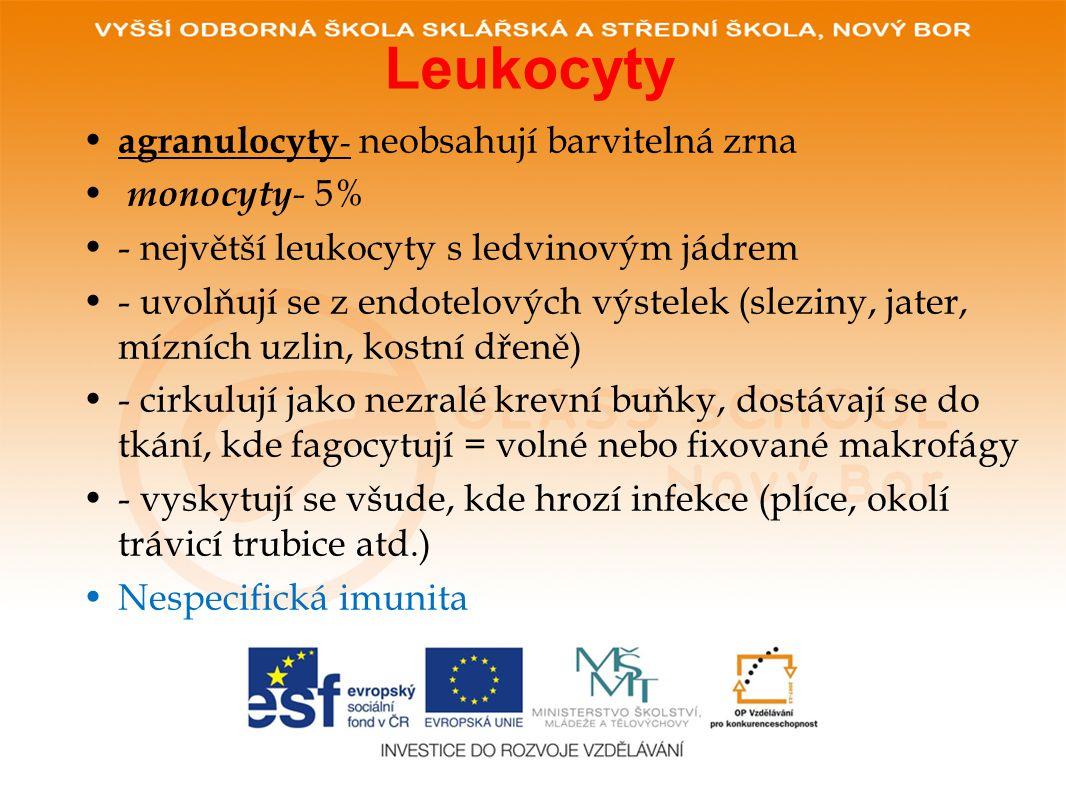 Leukocyty • agranulocyty - neobsahují barvitelná zrna • monocyty - 5% •- největší leukocyty s ledvinovým jádrem •- uvolňují se z endotelových výstelek (sleziny, jater, mízních uzlin, kostní dřeně) •- cirkulují jako nezralé krevní buňky, dostávají se do tkání, kde fagocytují = volné nebo fixované makrofágy •- vyskytují se všude, kde hrozí infekce (plíce, okolí trávicí trubice atd.) •Nespecifická imunita