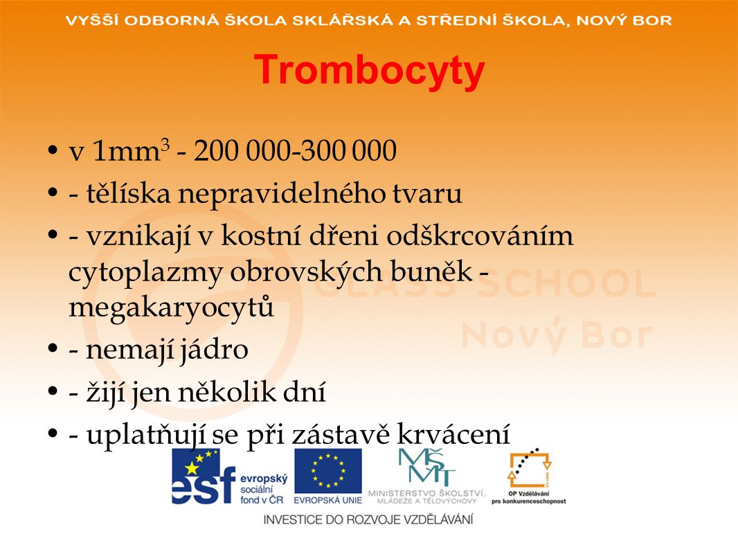 Trombocyty •v 1mm 3 - 200 000-300 000 •- tělíska nepravidelného tvaru •- vznikají v kostní dřeni odškrcováním cytoplazmy obrovských buněk - megakaryocytů •- nemají jádro •- žijí jen několik dní •- uplatňují se při zástavě krvácení