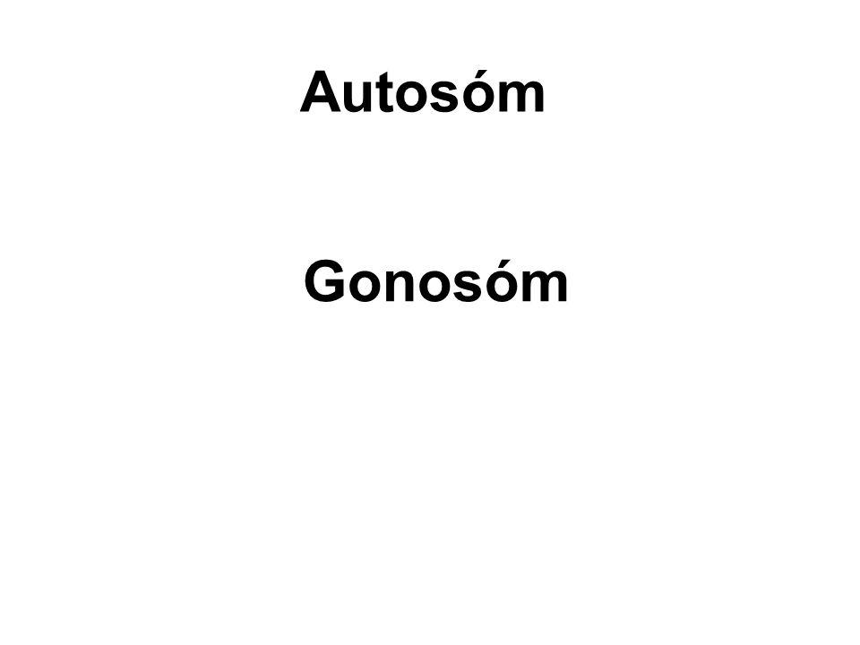 • Barva očí u Octomilky je vázána na X chromozóm a platí, že červená je dominantní nad bílou.