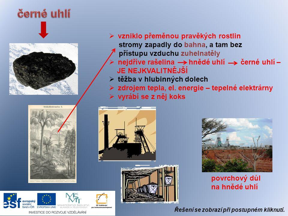  vznikla podobně jako uhlí, jen rozkladem těl pravěkých živočichů  olejnatá kapalina – smrdí  hlubinné vrty  ropný průmysl = ropovody  výroba: petrolej, barvy, prací prášky, um.