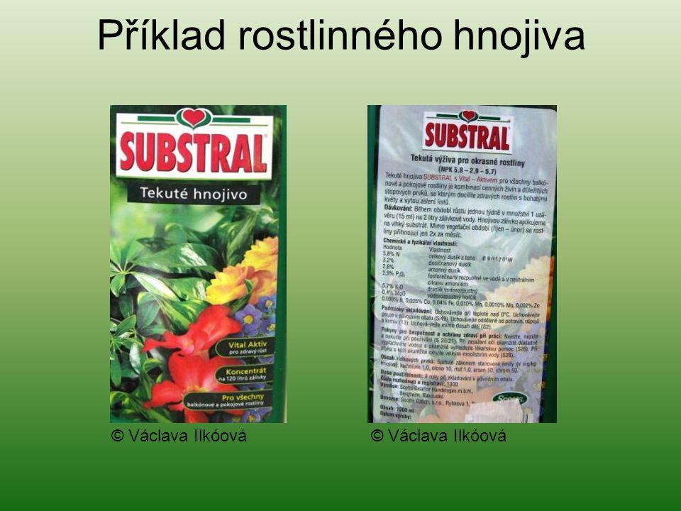 Příklad rostlinného hnojiva © Václava Ilkóová