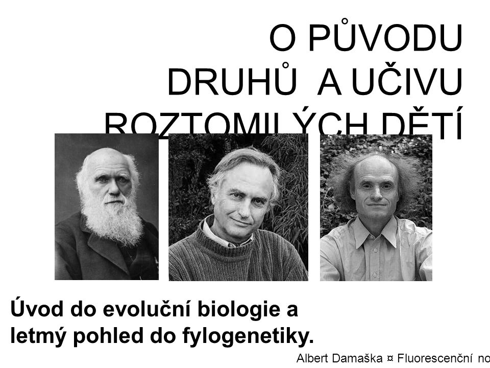 O PŮVODU DRUHŮ A UČIVU ROZTOMILÝCH DĚTÍ Úvod do evoluční biologie a letmý pohled do fylogenetiky. Albert Damaška ¤ Fluorescenční noc