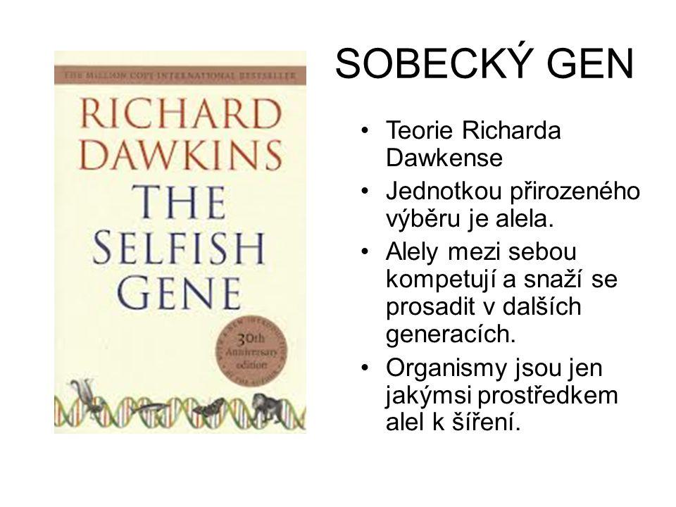 SOBECKÝ GEN •Teorie Richarda Dawkense •Jednotkou přirozeného výběru je alela. •Alely mezi sebou kompetují a snaží se prosadit v dalších generacích. •O