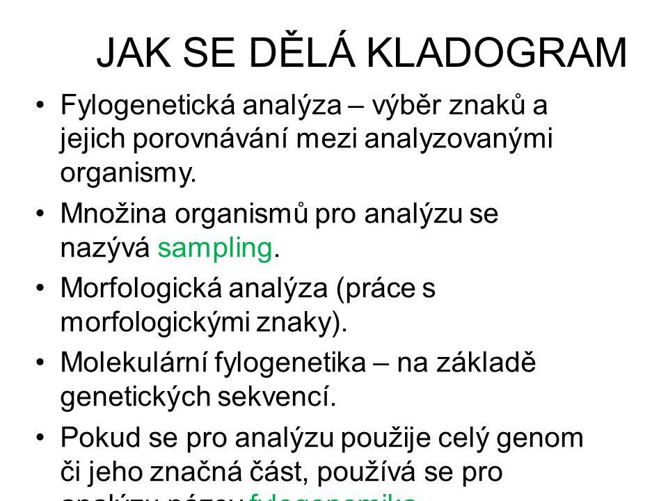 JAK SE DĚLÁ KLADOGRAM •Fylogenetická analýza – výběr znaků a jejich porovnávání mezi analyzovanými organismy. •Množina organismů pro analýzu se nazývá