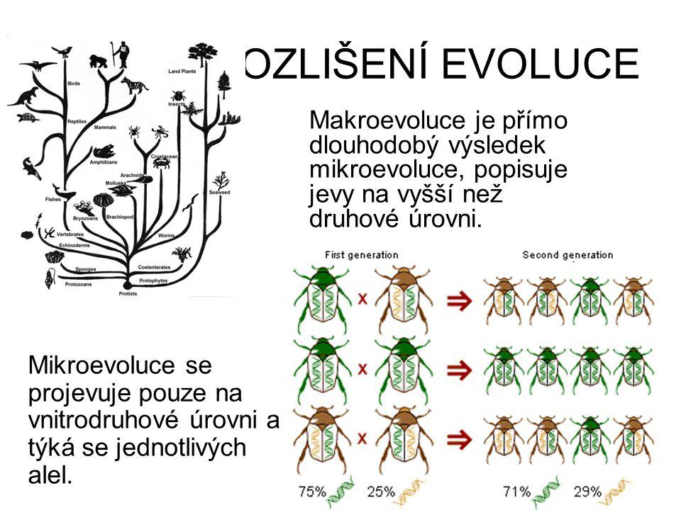 ROZLIŠENÍ EVOLUCE Makroevoluce je přímo dlouhodobý výsledek mikroevoluce, popisuje jevy na vyšší než druhové úrovni. Mikroevoluce se projevuje pouze n