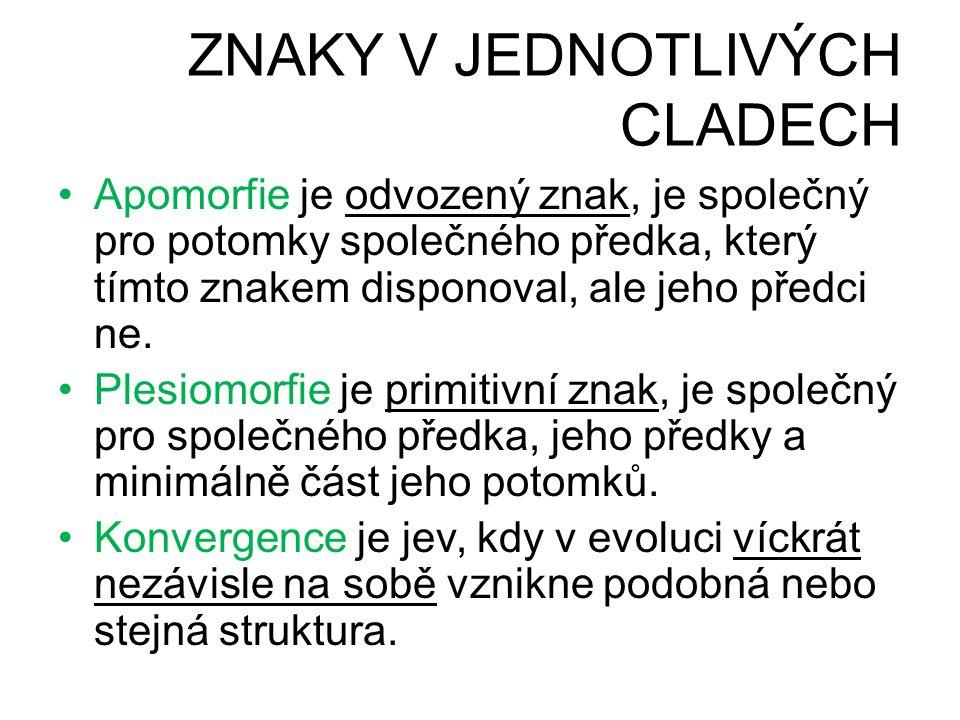 ZNAKY V JEDNOTLIVÝCH CLADECH •Apomorfie je odvozený znak, je společný pro potomky společného předka, který tímto znakem disponoval, ale jeho předci ne