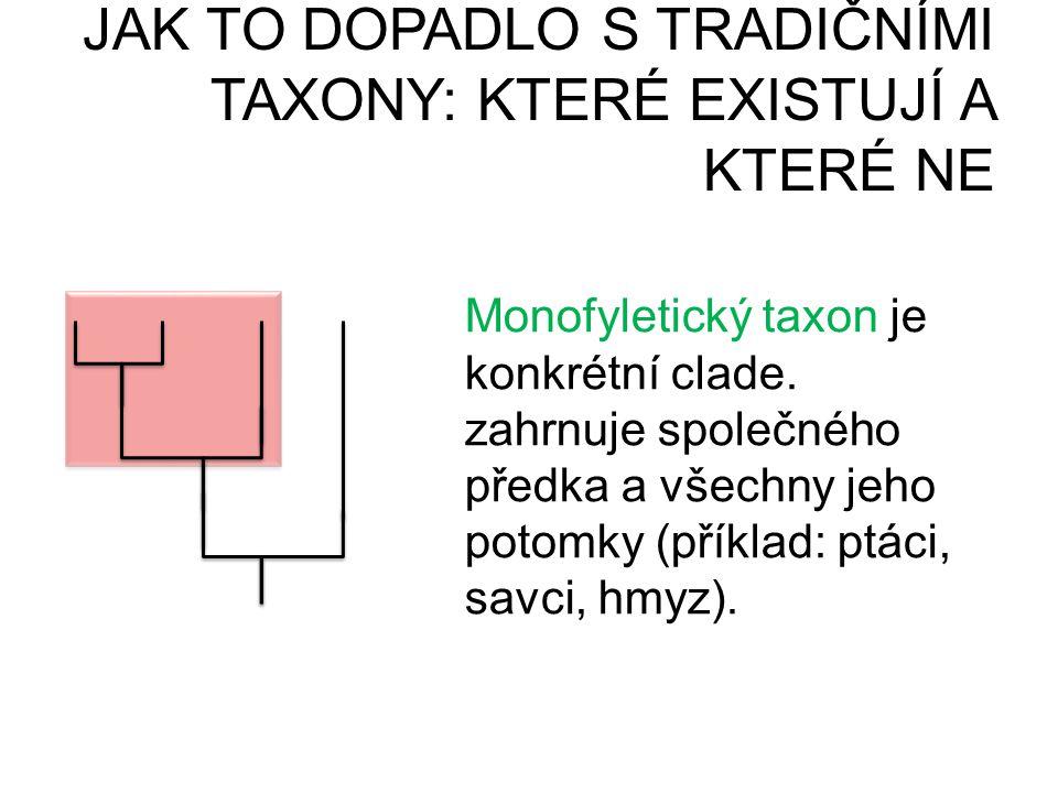 JAK TO DOPADLO S TRADIČNÍMI TAXONY: KTERÉ EXISTUJÍ A KTERÉ NE PARAFYLIEPOLYFYLIE Monofyletický taxon je konkrétní clade. zahrnuje společného předka a